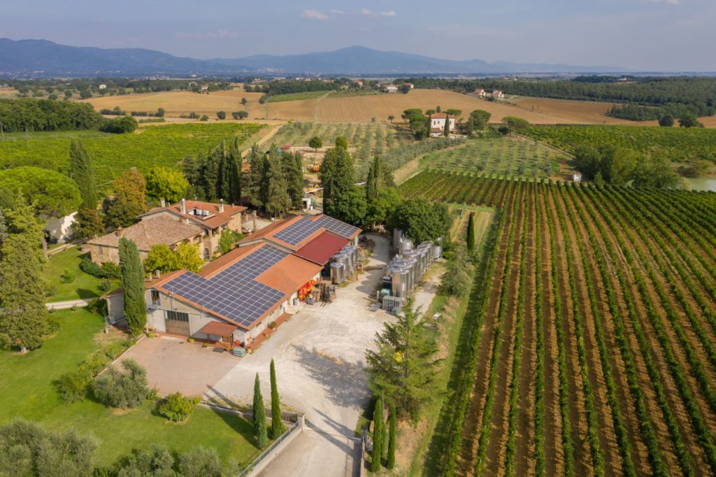showroom.wine talian winery San Luciano