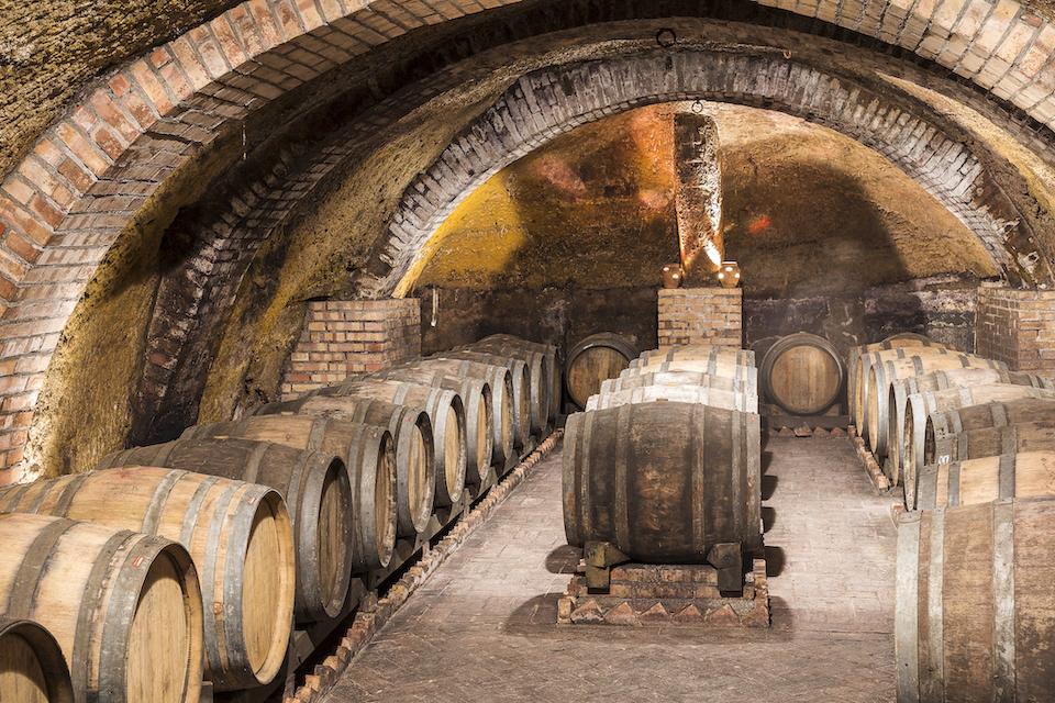 showroom.wine italian winery cantine del notaio_grande cellar