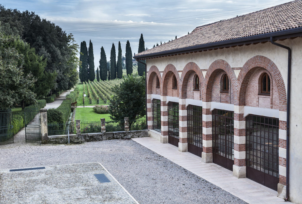 showroom.wine italian winery salvaterra winery